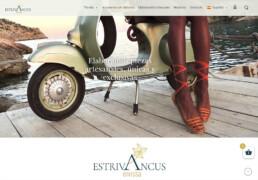 estrivancus-pagina-web
